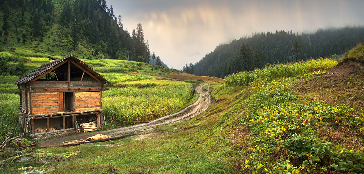 NEELUM VALLEY copy 2