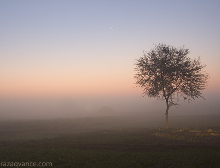 Mystic Beauty of Morning Moon In December