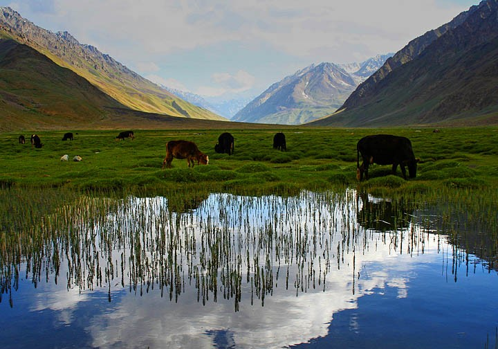 Ghizer Valley Have The Best Landscape Beauty In The World