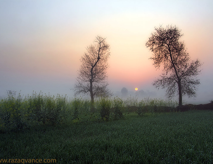Divine Light Pictures And Mystic Beauty Of Sunrise