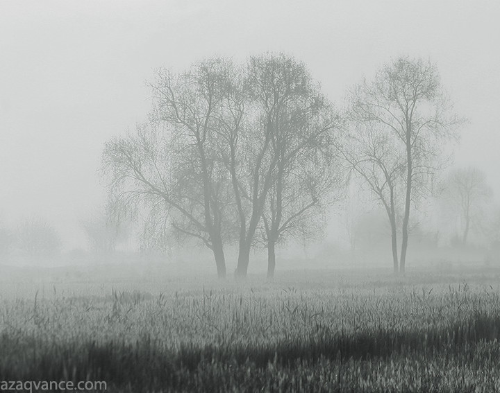 Fine Art Black And White Photography Of Morning Mood
