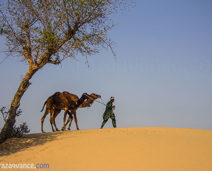 A Journey Through The Thal Desert In Pakistan