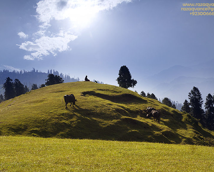 LIGHT AND SHADE STUDY IN LANDSCAPE PHOTOGRAPHY AT TOLIPEER KASHMIR