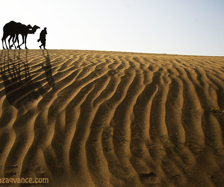Camel Caravan And Landscape Beauty Of Desert with Sand Ripples