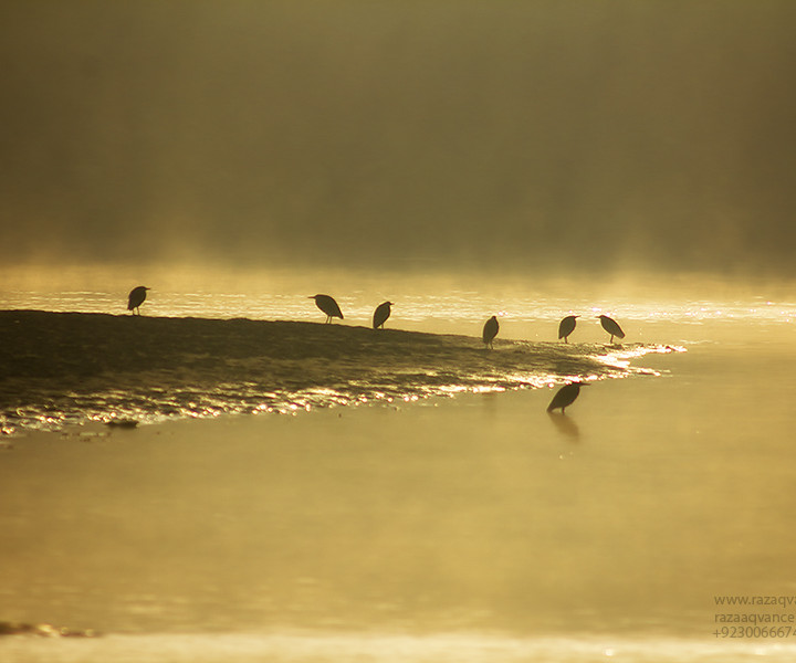 Landscape Photography and Beauty of Light on a Riverside