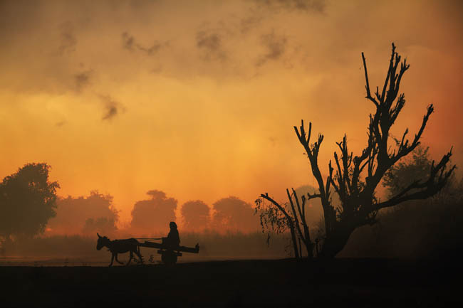 Early Morning Light And Life In Rural Asia
