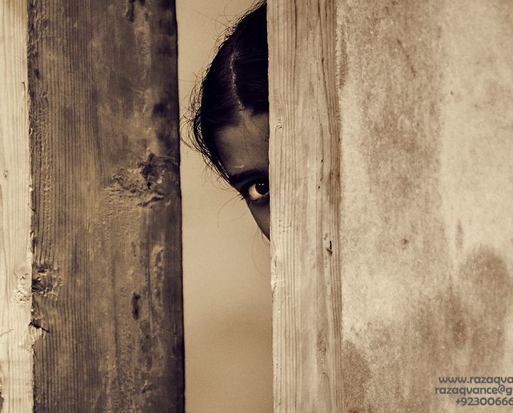 CURIOUS EYE THROUGH THE WALLS OF THE WOOD